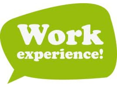 Image result for Work Experience